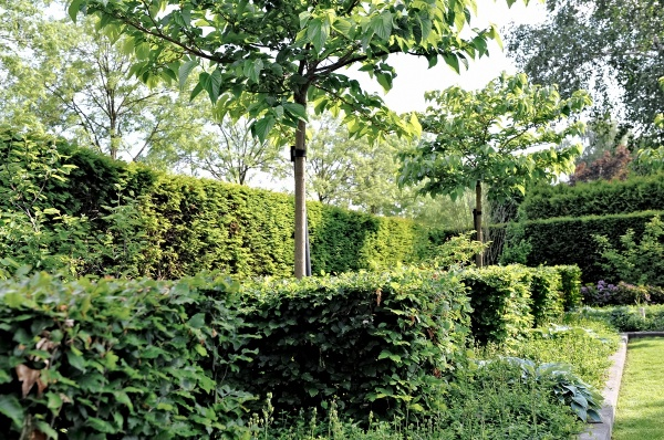 Vakkundig tuinonderhoud | Hoveniersbedrijf Catalpatuinen